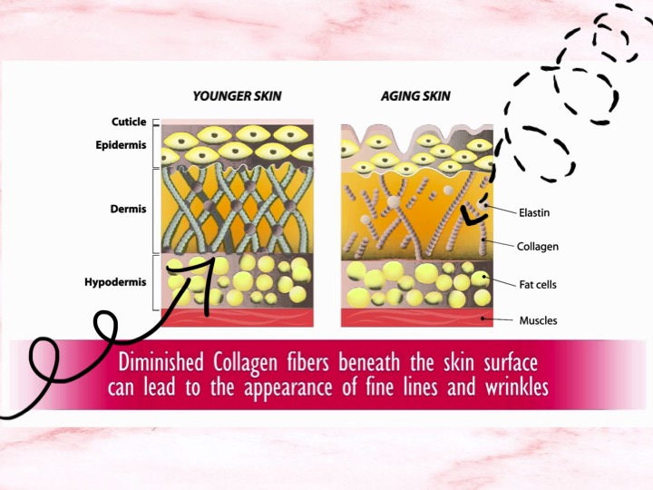 How Collagen Can Help Wrinkles